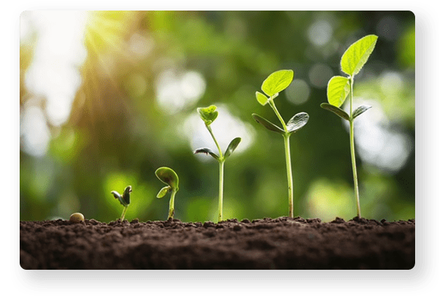 Harmonic's vision on environmental sustainability and innovation.